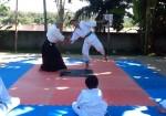 Hewia No Jutsu Aikido Dojo